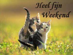 weekend heel fijn